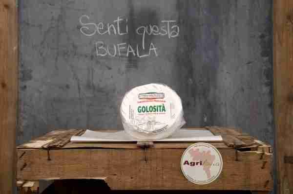 Golosità - Camembert di Bufala