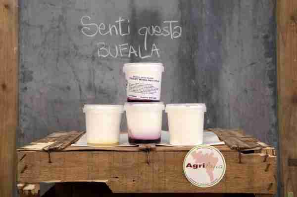 Yogurt di Bufala
