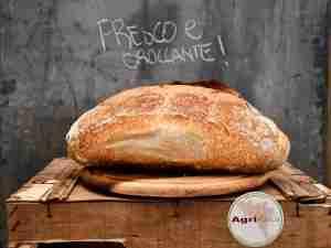 Pane Bianco Grano Tenero