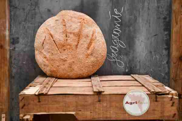Pane del Pellegrino con farina S. Pastore