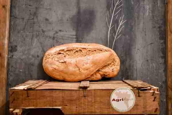 Pane ai grani antichi - la Roveda (solo al Sabato)